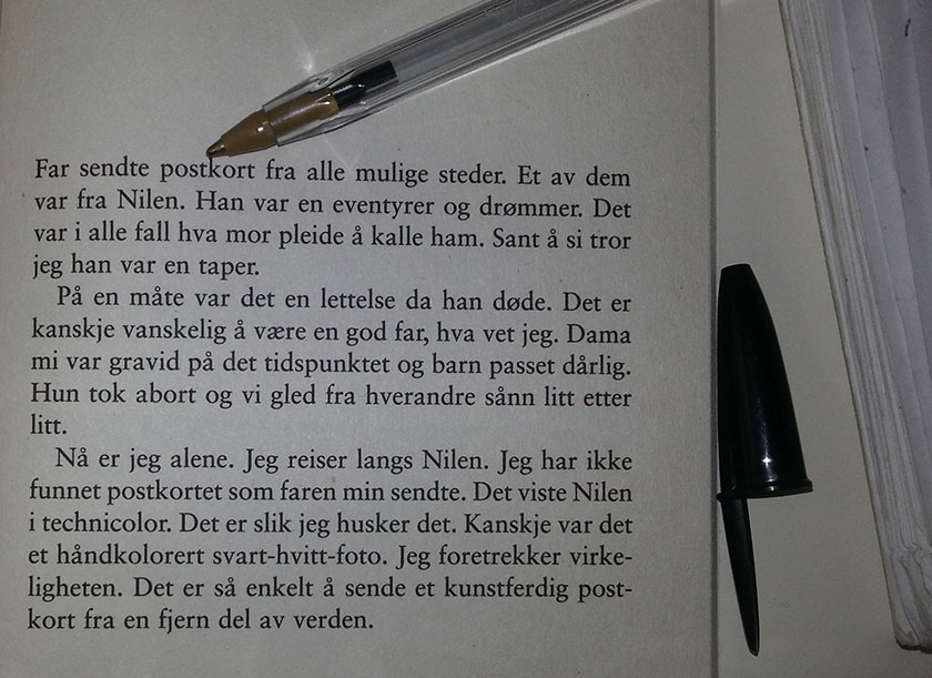 Ari Behn novelle Nilen