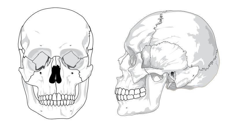 Kjeven temporomandibular joint