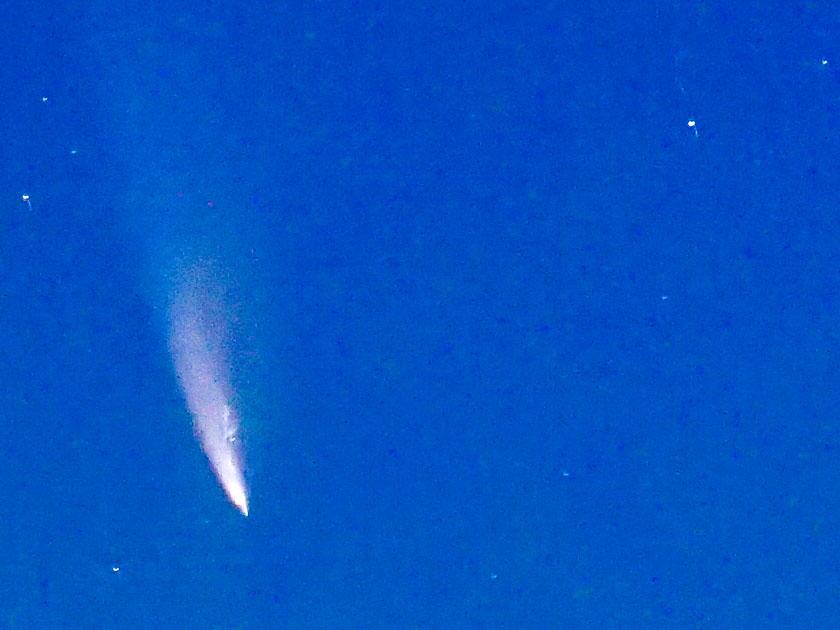 kvinnelig-vokal-comet-neowise-c-2020-f3