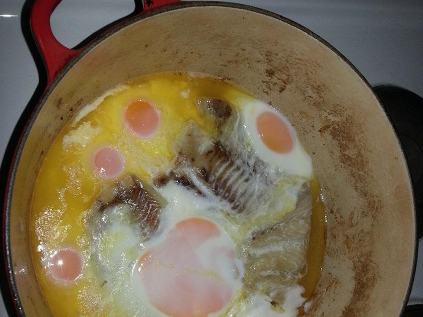 Egg og sei.