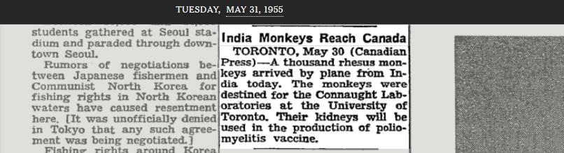 Rhesus aper og nyrer for poliomyelitt vaksine produksjon.