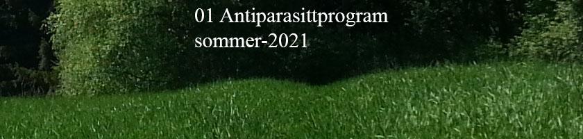 Antiparasittprogram sommeren 2021