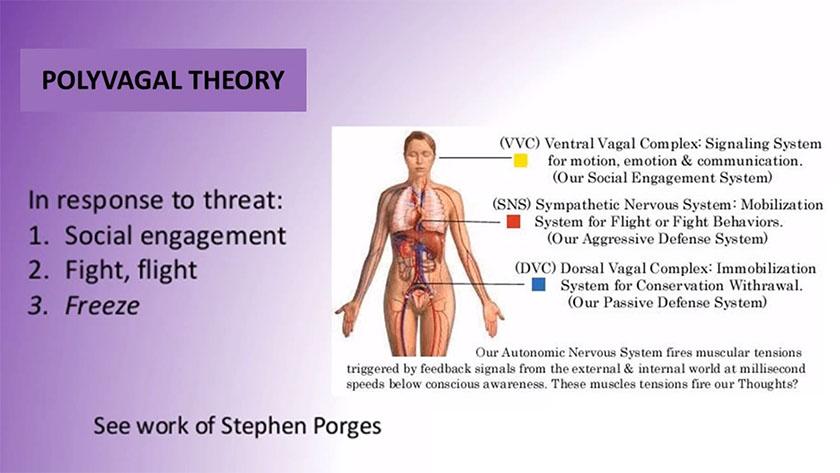 hjernen101-pic06-psychoenergetic